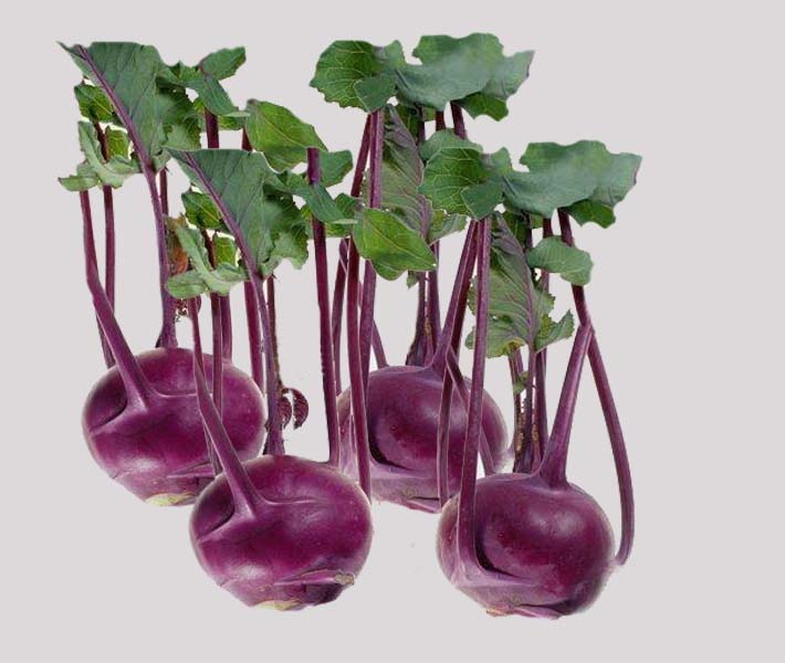 Other products | Eu | Vegetable | Turnip with Leaves ...