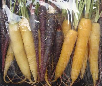 Baby Heirloom Carrots