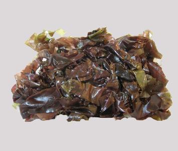 Seaweed Dulse