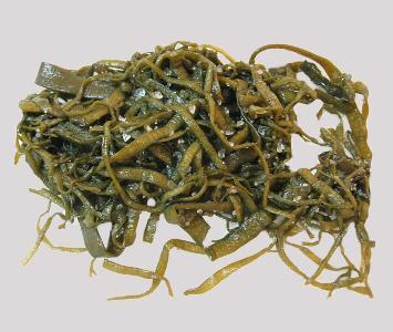 Seaweed - Haricot de Mer